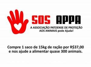 APPA quer conseguir novos voluntários