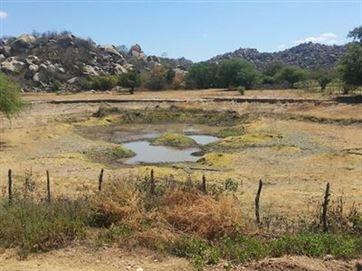 Pesquisa aponta seca maior e aumento de 6 graus de temperatura na Paraíba
