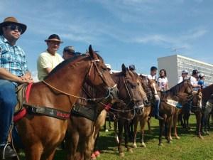 Manifestantes em Brasília (Foto: G1)