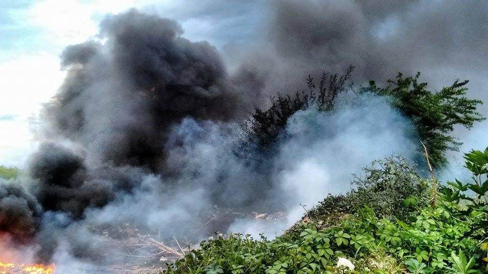 Crime ambiental: Resíduos são depositados e depois incendiados às margens da Alça Sudeste