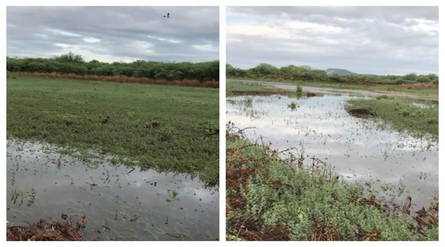 Chove 80 mm na Reserva Verdes Pastos e barragem sangra