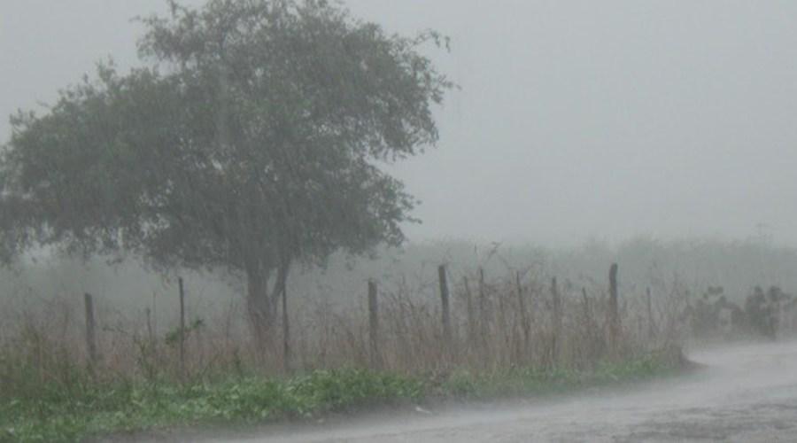 Choveu 78 milímetros em São José de Espinharas. Veja outros municípios