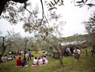 Pic & Nic a Trevi, arte, musica e merende tra gli olivi