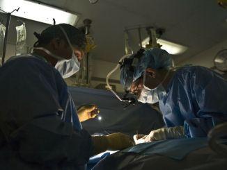 Morsa dal cane della nonna, intervento operatorio riuscito