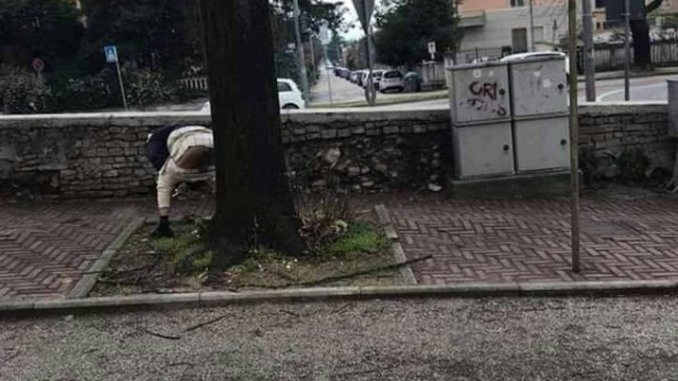Degrado ai Canapè, fa i suoi bisogni all'ingresso dei giardini