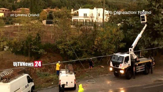 Maltempo a Foligno si schianta pino e trancia fili dell'energia elettrica