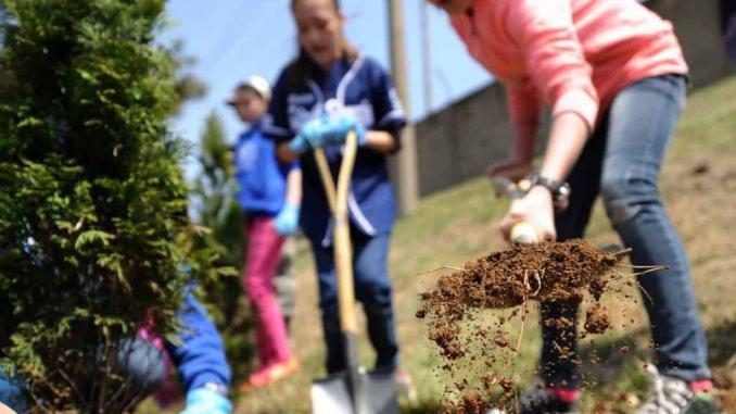 Piantiamo 60 milioni di alberi, a Foligno una delle prime adesioni