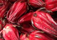 Como preparar Chicha de Saril