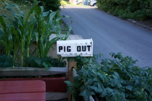 1-pig-out-mailbox