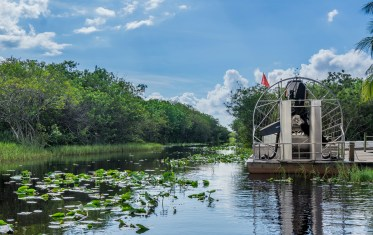 gator park airboat 2