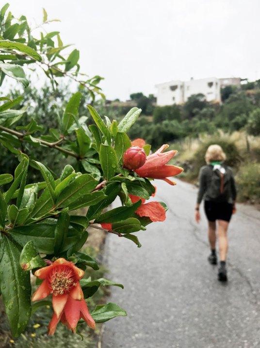 Yoga-und-Wandern-Kreta