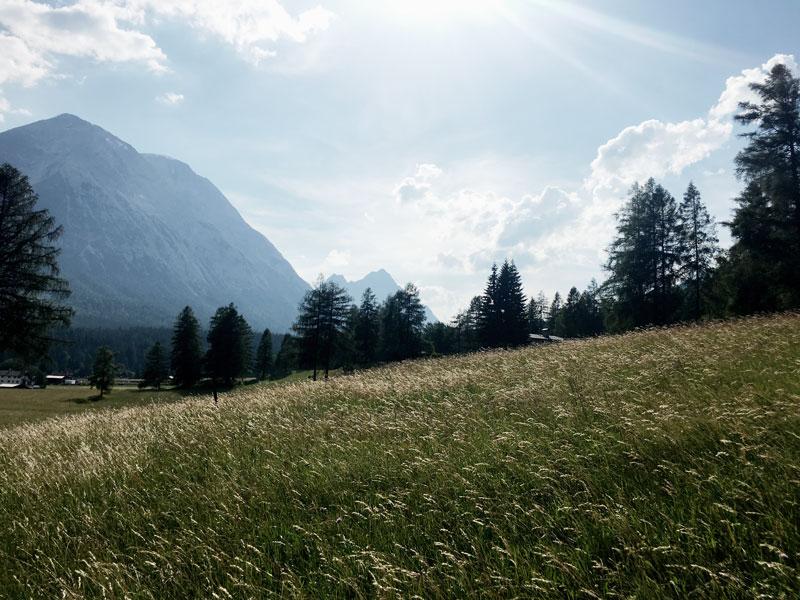 Wiese-Berge-Seefeld-Tirol