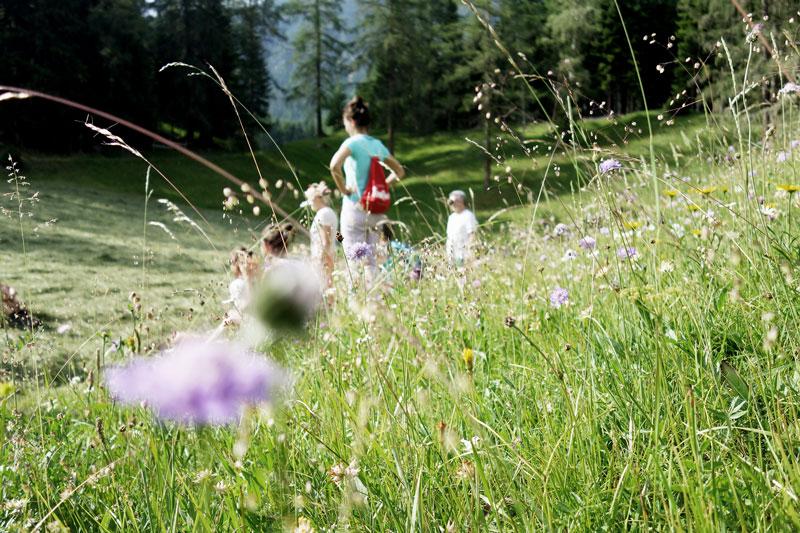 Yoga-Naturtage-Seefeld-Tirol