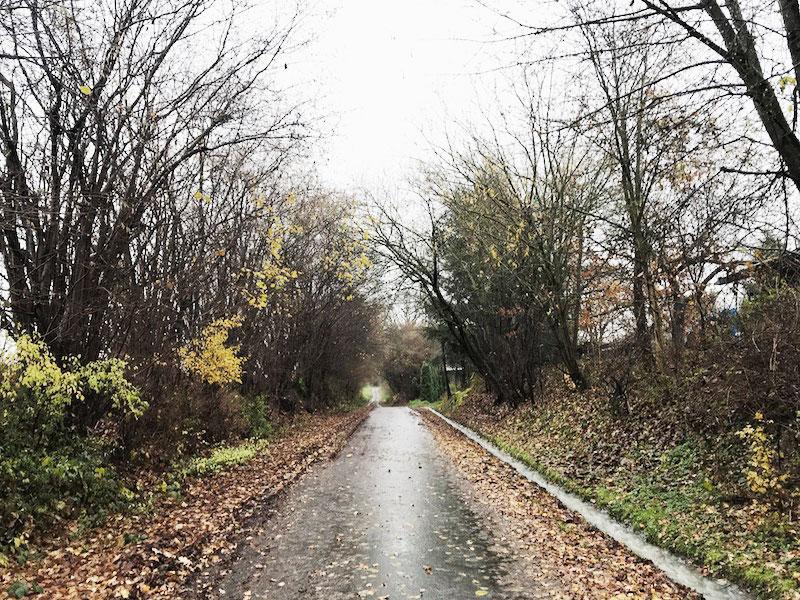 November-Landschaft-Birstein