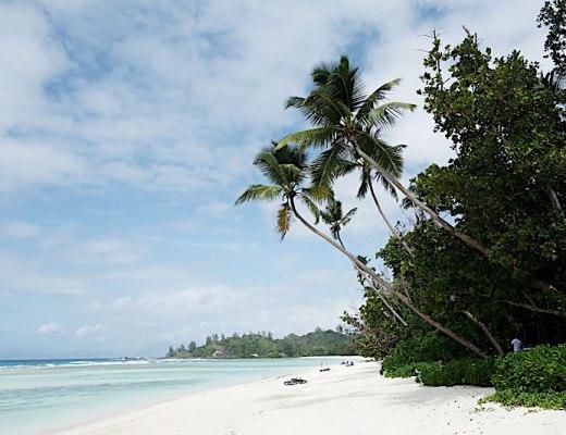 palmenstrand-hilton-seychellen