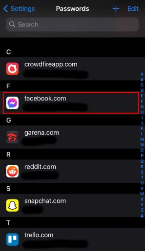 How to see Facebook password on iPhone