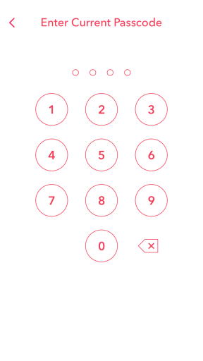 Enter Current Passcode Snapchat