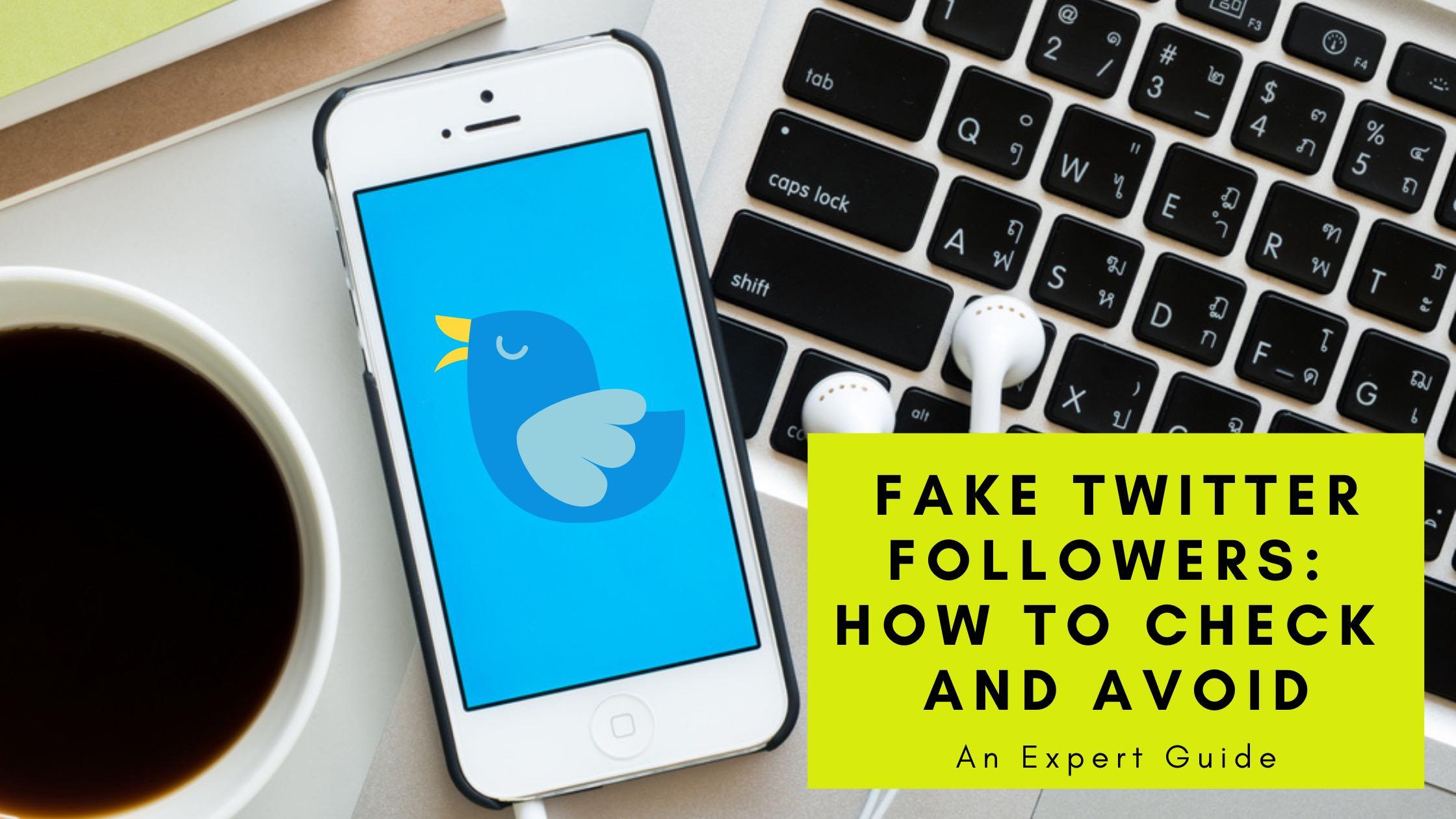 fake Twitter followers check, blog banner