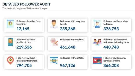 detailed Twitter follower audit insights