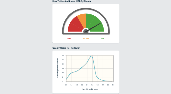 TwitterAudit Dashboard: Fake follower audit tool