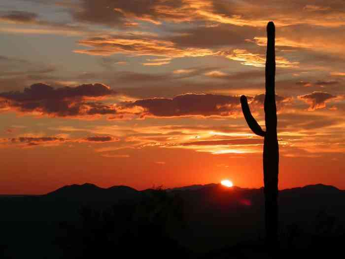The Ultimate 5 Day Arizona Road Trip Itinerary