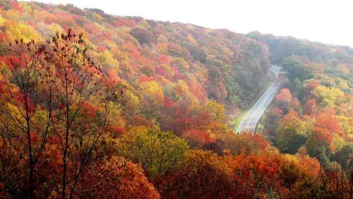 Top 5 November Travel Destinations To Visit This Fall