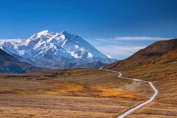 road through Denali on your Alaska itinerary