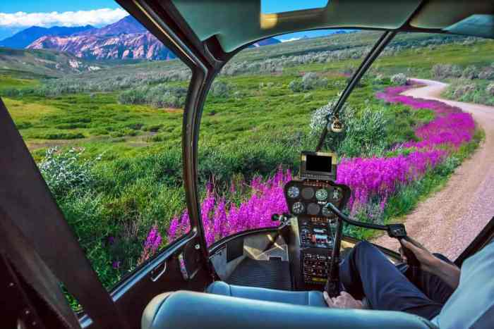 Helicopter tour in Seward Alaska
