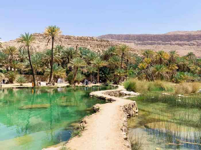 Beautiful walkway at Oman's Wadi Bani Khalid