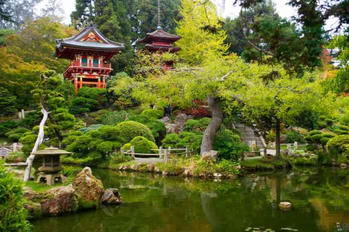 Japanese garden at golden gate park