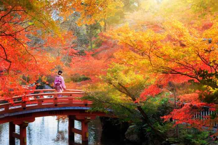 You should consider planning a trip to Japan in the fall