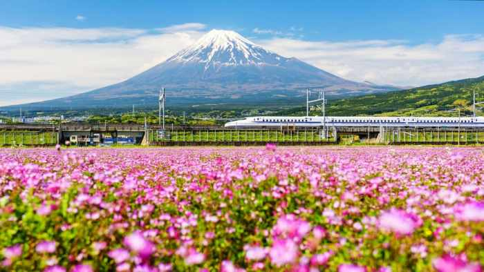 make sure to get a rail pass when planning a trip to Japan