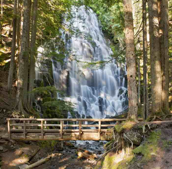for a bit of a longer hike and one of the most beautiful waterfalls in Oregon visit Ramona Falls
