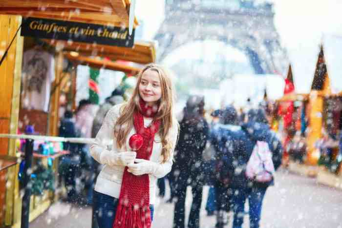 Visit the markets during christmas in paris