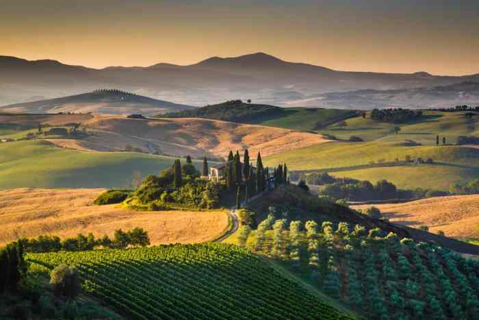 The rolling hills of Val d'Orcia are a must-see on your Italy road trip