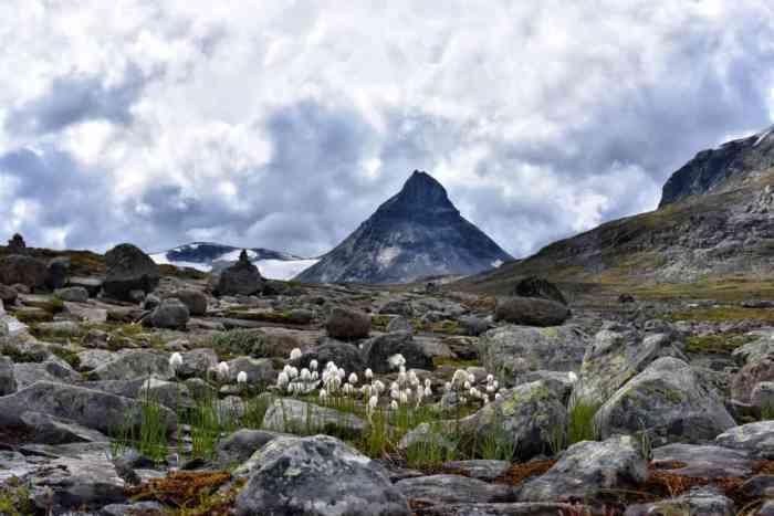Photo of Mt Galdhøpiggen