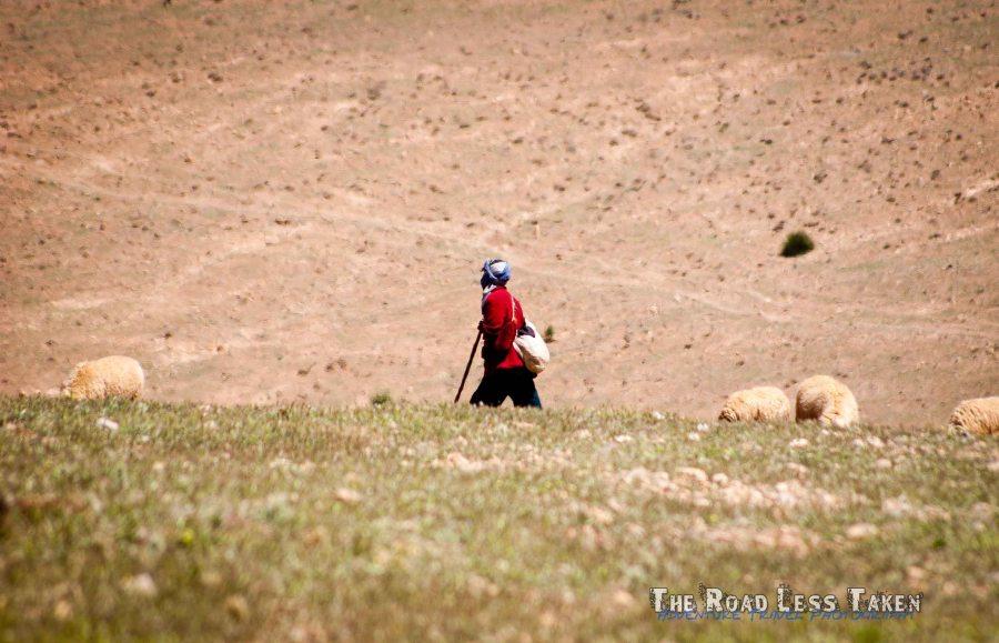 Moroccan shepherd in the High Atlas, Morocco