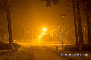 Latvia Night-6