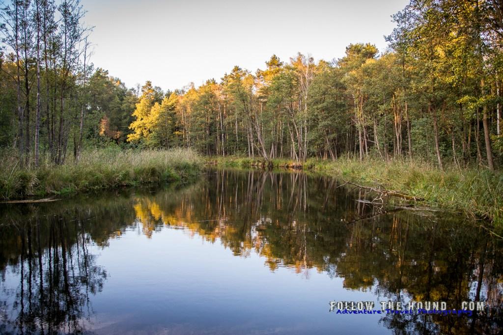 River Nowy Swiat