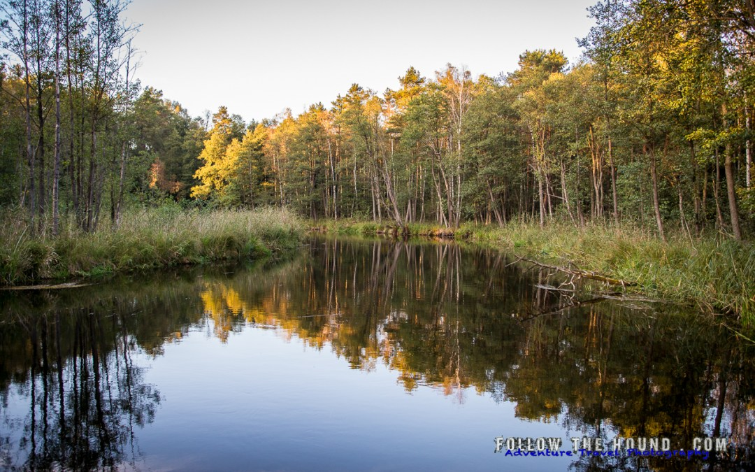 Wild Boars and Canoeing (A real adventure in the Polish lakes)