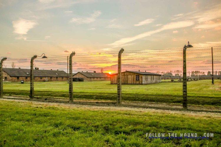 Auschwitz-36