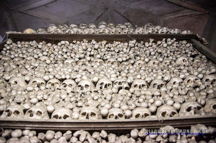 Church Bones -11