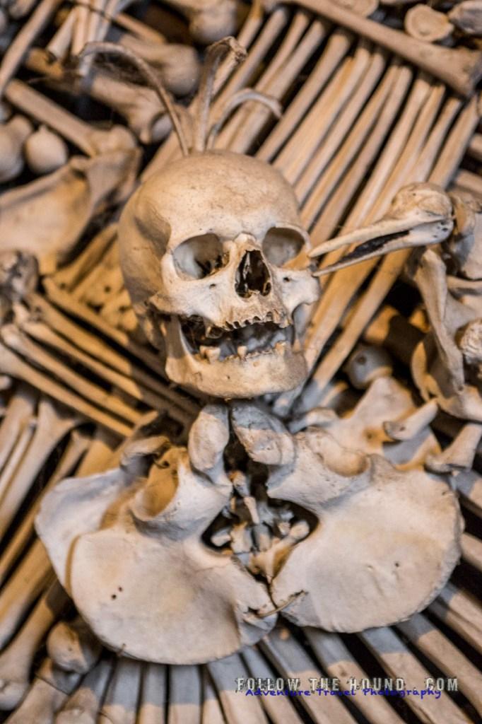 Church Bones -13