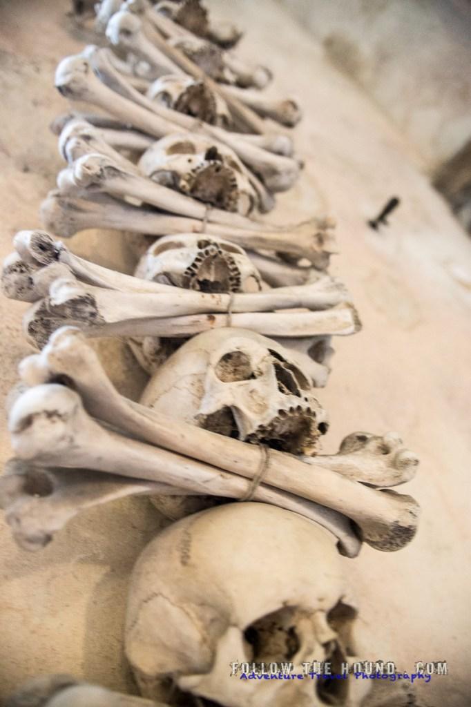 Church Bones -17