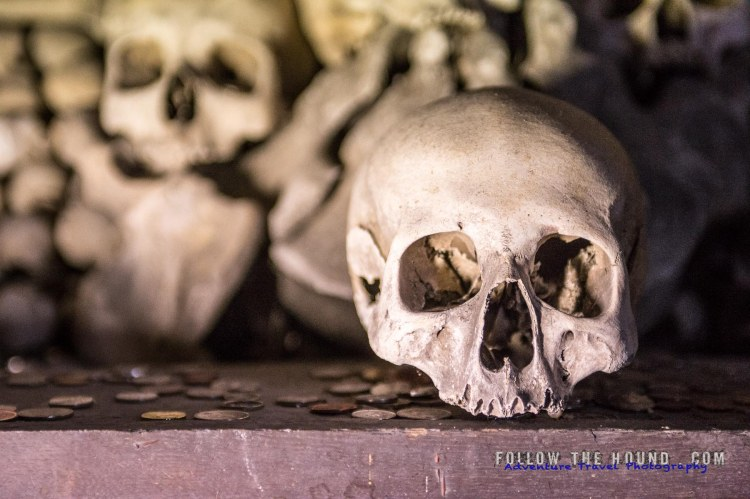Church Bones -18