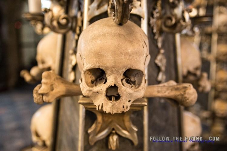 Church Bones -9