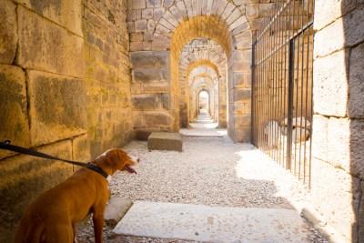 Pergamon (26 of 36)