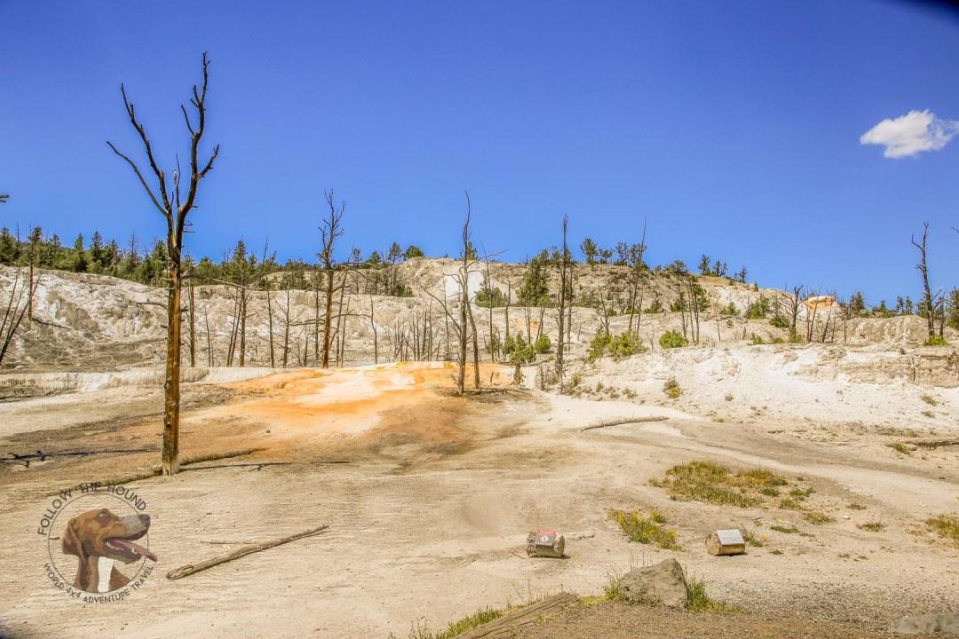 Yellowstone Glacier (13 of 28)