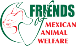 Friends of MX Animal Welfare