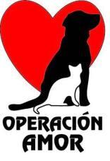 animal welfare, operacion amor